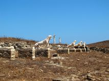 Stone lions of Delos Stock Photos
