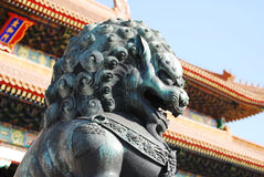 Stone lions. In forbidden city, Beijing, China Royalty Free Stock Photo