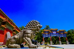 Stone lions guarding the gate Stock Image
