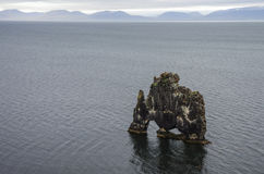 Stone mammoth Iceland. The picturesque cliff in Bay of Hoonah. Hvitserkur rocks during low tide at sunset Stock Photos