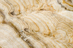 Stone marble background Stock Photography