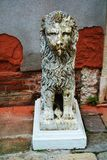 Stone or marble lion sculpture in Venice, Italy Royalty Free Stock Photography