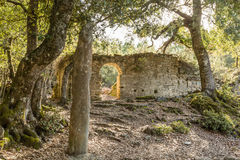 Stone Menhir de Petra Frigiata in Corsica Royalty Free Stock Photography