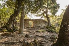 Stone Menhir de Petra Frigiata in Corsica Stock Photography