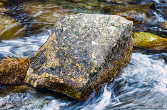 A stone in the middle of the river. With clrea water, landscape Stock Photo