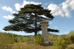 Stone monument with pine Stock Images
