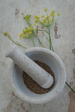 Stone mortar with anise seed and flower Royalty Free Stock Photos