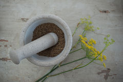 Stone mortar with anise seeds and flower Stock Images