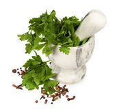 Stone mortar with parsley and spices Stock Image