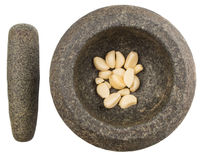 Stone Mortar, Pestle And Garlic I Stock Images