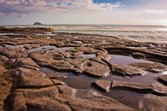 Stone mosaic in Muriwai beach, New Zealand royalty free stock image