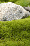 Stone and moss Royalty Free Stock Photo