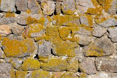 Stone and moss background Royalty Free Stock Image