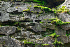 Stone with moss Royalty Free Stock Photos