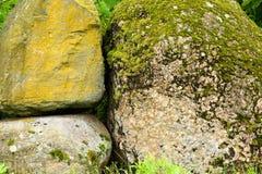 Stone, moss Stock Photo