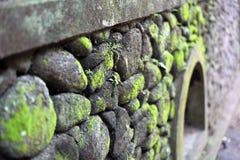 Stone moss wall Stock Image