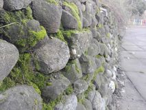Stone moss wall. Wall of stones with moss inbetween, in a playground area Stock Photography