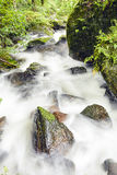 Stone and moss with the waterfall Stock Image