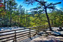 Stone mountain north carolina scenery during autumn season Royalty Free Stock Photo