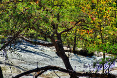Stone mountain north carolina scenery during autumn season Stock Image