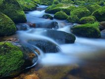 Stone in the mountain river with wet mossy carpet and grass leaves. Fresh colors of grass, deep green color of wet moss. And blue milky water below stone Stock Photos