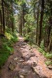 Stone Mountain trail Royalty Free Stock Photography