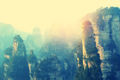 Stone mountain at zhangjiajie Royalty Free Stock Images