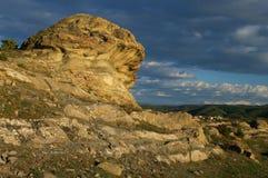 Stone mushroom Royalty Free Stock Photography