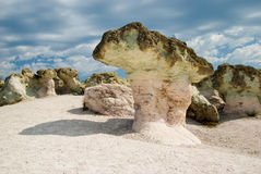 The Stone Mushrooms Stock Images
