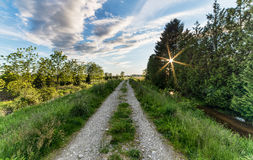 Stone Overgrown Road Leading to Distance with Sun Star Stock Photos