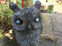 Stone owl Stock Photo