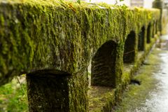 Free Stone Parapet Covered With Moss After Rain Stock Photo - 110500950