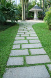 Stone path. In the park with green grass Stock Image