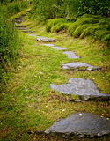 Stone path Royalty Free Stock Photos
