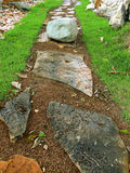 Stone Path. A huge stone on garden path Stock Image