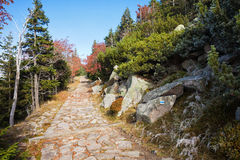 Stone Path in Autumn Mountains Royalty Free Stock Image