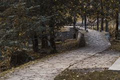 Stone path among autumn trees in the national park stock image