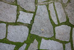 Stone path background footpath with stones. Stock Images