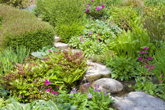 Stone path through beautiful, colourful, lush garden Stock Photos