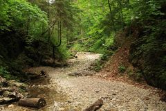 Stone path in dry riverbed of river Suchá Belá in Slovak Paradise. Stone path in dry riverbed of river Suchá Belá in forest in Slovak national Royalty Free Stock Image