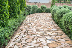 Stone path with fallen leaves through Royalty Free Stock Image