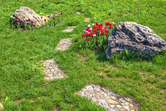 Stone path and flowers on lawn Stock Images