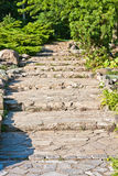 Stone path in the garden Royalty Free Stock Photography