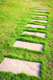 Stone path in the garden Royalty Free Stock Images