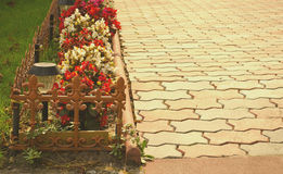 Stone path in the garden flanked with colorful flowers, fall background Royalty Free Stock Photo