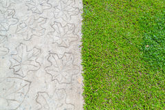 Stone path with grass Royalty Free Stock Photography