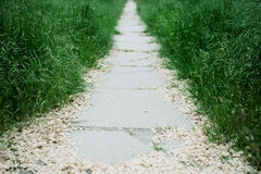 A stone path Royalty Free Stock Image