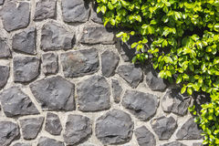 Stone Path  Royalty Free Stock Images