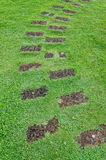Stone path on green grass Stock Images