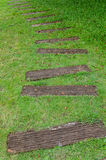Stone path on green grass Stock Photos